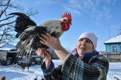 An elderly woman shows her big cock. Royalty Free Stock Photography