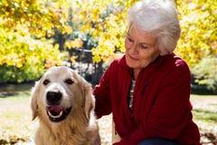 elderly woman sitting with dog stock photos