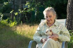 Elderly woman sitting in the garden with a small chihuahua stock images