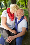 Elderly woman sitting on lap of senior man. Elderly women sitting on lap of senior men in a park in summer royalty free stock images
