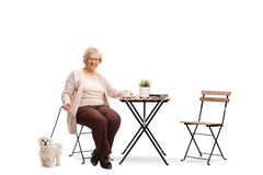 Elderly woman sitting at a table with a cup of coffee and her dog next to the chair royalty free stock photos