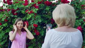 Elderly woman takes pictures young girl. The mother takes pictures of the daughter. Red roses flowers in the background. stock footage