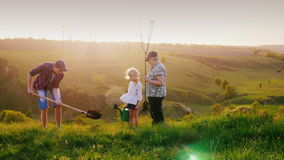 An elderly woman with two grandchildren, a boy and a girl, plant a tree together. Against the background of the. Picturesque landscape at sunset. Concept stock video footage