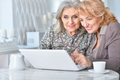 Elderly woman using a laptop Royalty Free Stock Photo