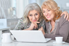 Elderly woman using a laptop Royalty Free Stock Images