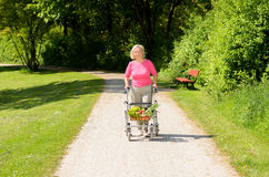 Elderly woman using a walker to do her shopping Royalty Free Stock Images