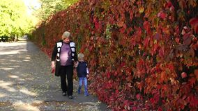 An elderly woman walks with her little grandson in the autumn Park. stock footage