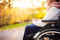 An elderly woman in wheelchair in autumn nature. Unrecognizable elderly woman in wheelchair in autumn nature. Senior woman on a walk stock image