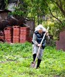 Elderly woman working Stock Image