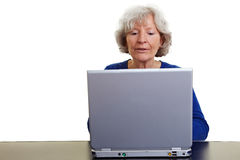 Elderly woman working on a laptop Stock Photos
