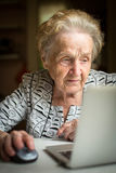 An elderly woman working on a laptop. Royalty Free Stock Image