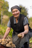Elderly woman working outdoors Royalty Free Stock Images