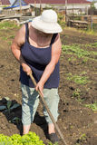 Elderly woman working in the summer in the garden Stock Photo