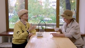 Elderly women and cafe table. Ladies talking and laughing. You won`t believe me stock video