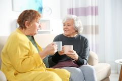 Elderly women drinking tea together. In living room stock photography