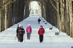Elderly women are engaged in the Nordic walking in the winter park Royalty Free Stock Image