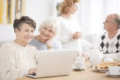 Elderly woman using laptop. Elderly women searching for news on the internet using a laptop during meeting with friends Stock Image