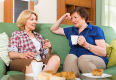 Elderly women at the table with tea Stock Photos