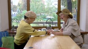 Elderly women and a tablet. Cafe table near window. Friends discuss new technologies stock video footage