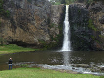 An eldery man taking picture of Hunua Falls Stock Images