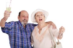 Eldery tourist couple proposing a toast stock images
