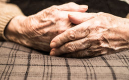 Eldery woman hands. Grandmother with clasped hands Royalty Free Stock Images