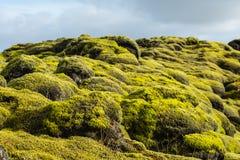 Eldhraun - Moss Fields, Iceland Stock Image