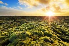 Eldhraun sunrise Stock Images