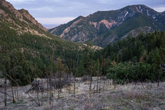 Eldorado Canyon State Park. From the Eldorado Canyon Trail late in the day stock image