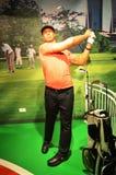 Eldrick Tont Tiger Woods Стоковые Фото