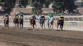 Ele ` s uma corrida de cavalos Fotografia de Stock