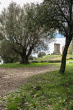 Elea Velia in Roman times, is an ancient city of Magna Grecia Royalty Free Stock Photo
