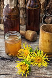 Elecampane tincture Royalty Free Stock Photos
