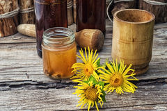 Elecampane tincture Stock Images