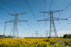 Elecrical Pylon Royalty Free Stock Image