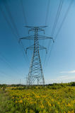 Elecrical Pylon Royalty Free Stock Photography
