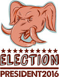 Election President 2016 Republican Elephant Mascot. Etching engraving handmade style illustration of an American Republican GOP elephant mascot head viewed from vector illustration