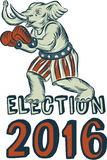 Election 2016 Republican Elephant Boxer Etching. Etching engraving handmade style illustration of an American Republican GOP elephant boxer mascot boxing with vector illustration