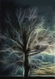 The Electra Living Tree. This is an ancient oak tree photograph with a fractal effect added to the silhouette image vector illustration