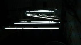 Electrcity claro de néon na sala escura fotos de stock royalty free
