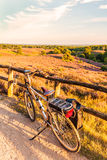 Electric bicycle in Dutch national park The Veluwe. With blooming heathland, The Netherlands royalty free stock images