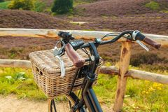 Electric black cargo bicycle with basket in Dutch national park Stock Image