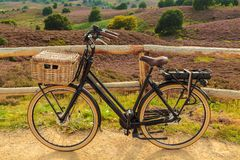 Electric black cargo bicycle with basket in Dutch national park Royalty Free Stock Image