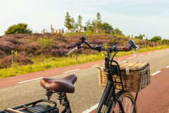 Electric black cargo bicycle with basket in front of the Veluwe Royalty Free Stock Photos
