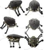 Electric Bug. Toy Bug Isolated On White Royalty Free Stock Image