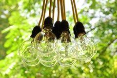 Electric Bulb Garland Hanging In Summer Backyard Garden Stock Photo