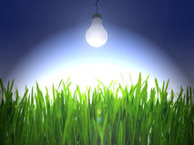 Electric bulb shine. Over a green grass Royalty Free Stock Photo
