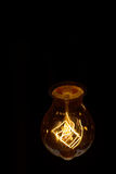 Electric bulb. Royalty Free Stock Photo