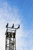 Electric cables. And pylon against the blue sky royalty free stock images