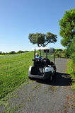 Electric car in the golf course, Andalusia, Spain Stock Photography